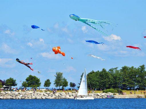 Kite Fest by the Bay